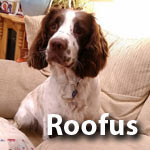 roofus
