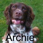 ArchieSS